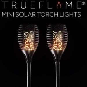 Mini TrueFlame